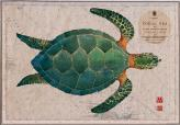 green turtle on old chart